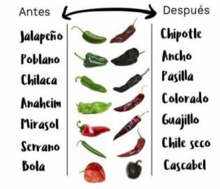 A chart showing fresh chiles with their names as well as what they're called when dried.